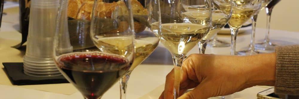Visite de caves, dégustation vins