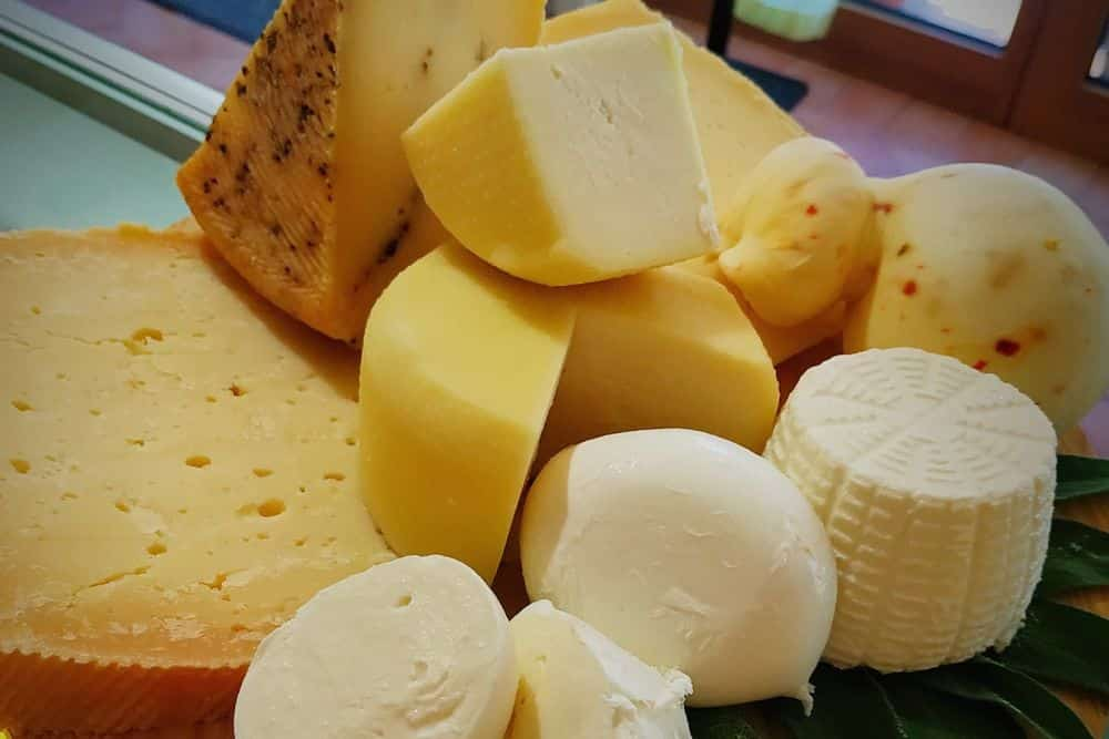 Cheese and wine tasting in the Venetian hills. Chauffeur service private tour